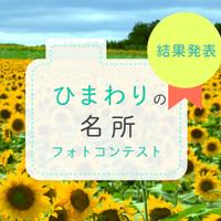 ひまわりの名所フォトコンテスト【結果発表】