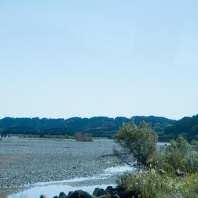 山縣真さんの大井川橋への投稿